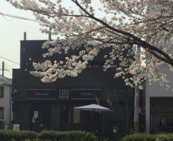 cafe&bar15_gaikan_sakura