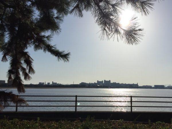 甲子園浜から武庫川を望